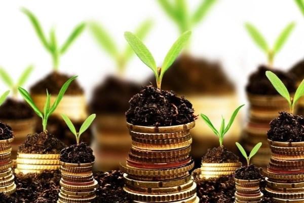 انواع سرمایهگذاری از دید اسلام