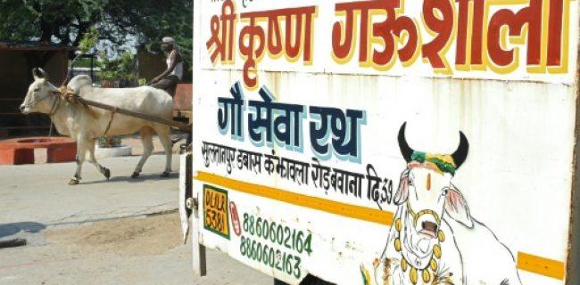 هند گزارش «آزادیهای مذهبی» آمریکا در مورد هندوها و مسلمانان را رد کرد