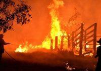 جوامع اسلامی و یهودی استرالیا دست کمک به قربانیان آتش سوزی دراز می کنند