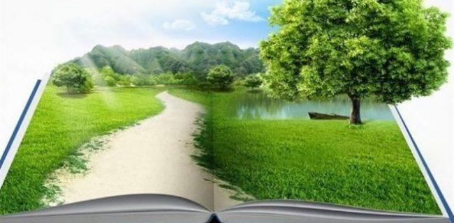 ارتباط انسان و طبیعت در اسلام و آیین دائو (۳)